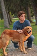 A Dog's Purpose Photo