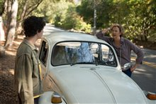 20th Century Women Photo 7