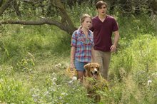 A Dog's Purpose Photo 2