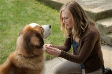 A Dog's Purpose Photo 12