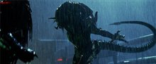 Aliens vs. Predator: Requiem photo 6 of 9