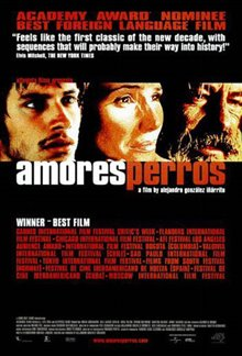 Amores Perros Poster Large
