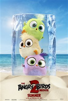 Angry Birds : Le film 2 Photo 38