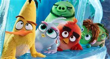 Angry Birds : Le film 2 Photo 9