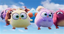 Angry Birds : Le film 2 Photo 13