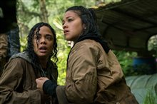 Annihilation Photo 10