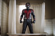 Ant-Man photo 13 of 49 Poster