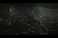 Ant-Man Photo 19