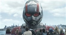 Ant-Man and The Wasp Photo 4