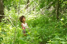 Beasts of the Southern Wild photo 12 of 15