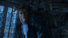 Beauty and the Beast Photo 4