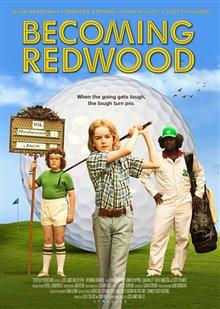 Becoming Redwood Photo 1 - Large