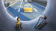 Bee Movie photo 7 of 29
