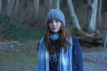 Before I Fall Photo 5