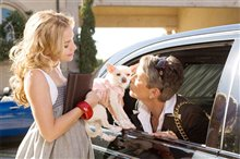 Beverly Hills Chihuahua Photo 1