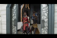 Black Panther Photo 4
