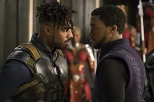 Black Panther photo 8 of 15