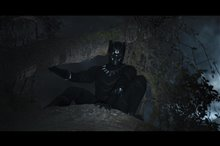 Black Panther Photo 12