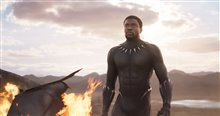 Black Panther Photo 16