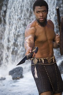 Black Panther Photo 34