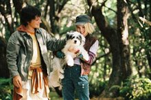 Bridge to Terabithia Photo 20