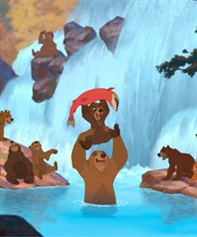 Brother Bear Photo 7 - Large