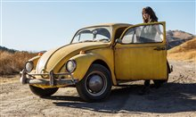Bumblebee Photo 1