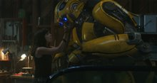 Bumblebee Photo 7