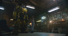 Bumblebee Photo 9