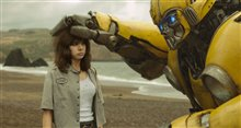 Bumblebee Photo 11