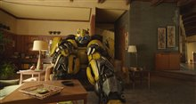 Bumblebee (v.f.) Photo 25