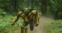 Bumblebee (v.f.) Photo 31
