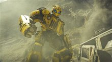 Bumblebee (v.f.) Photo 33
