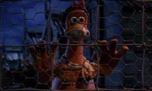Chicken Run Photo 2