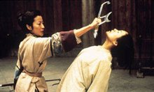 Crouching Tiger, Hidden Dragon Photo 10
