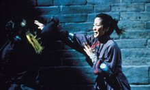 Crouching Tiger, Hidden Dragon Photo 12