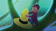 Curious George Photo 18