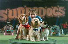 Daniel and the Superdogs Photo 2