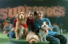 Daniel and the Superdogs Photo 6