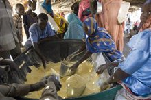 Darfur Now Photo 26