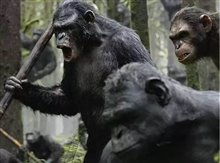 Dawn of the Planet of the Apes 3D photo 6 of 14