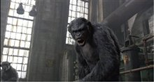Dawn of the Planet of the Apes 3D photo 8 of 14