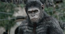Dawn of the Planet of the Apes 3D photo 11 of 14