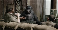 Dawn of the Planet of the Apes 3D photo 13 of 14