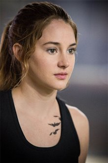 Divergent Photo 17