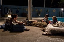 Dolphin Tale photo 18 of 32
