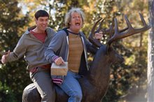 Dumb and Dumber To photo 16 of 24