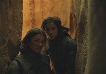 Dune Photo 12