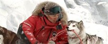 Eight Below Photo 16