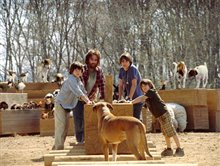 Evan Almighty photo 12 of 40